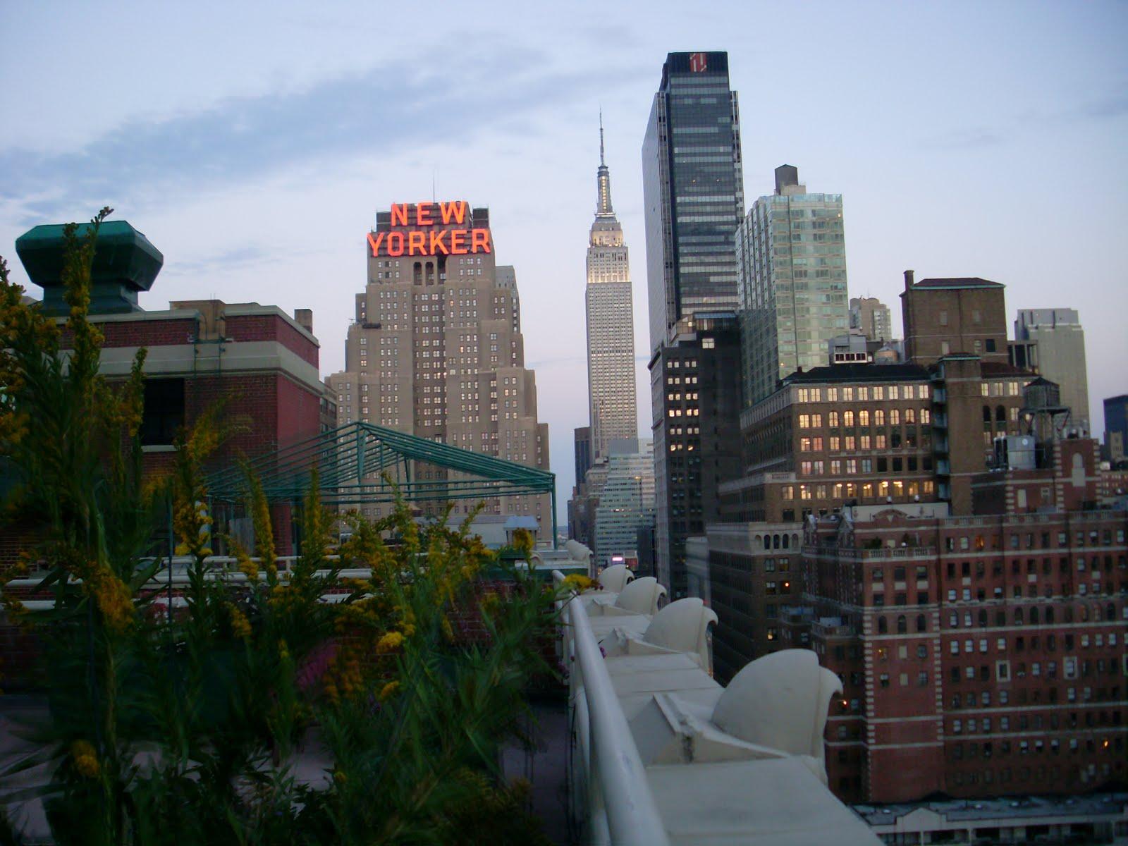 Phillippalovesdesign new york internship fashion week for Internship new york