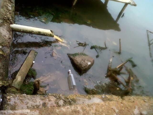 Cloacas caen a la orilla de la playa