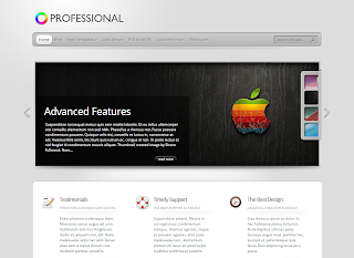 Snapshot of TheProfessional Theme demo page
