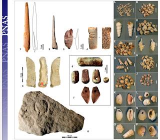 ossa, denti materiali