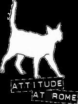 Attitude at Rome