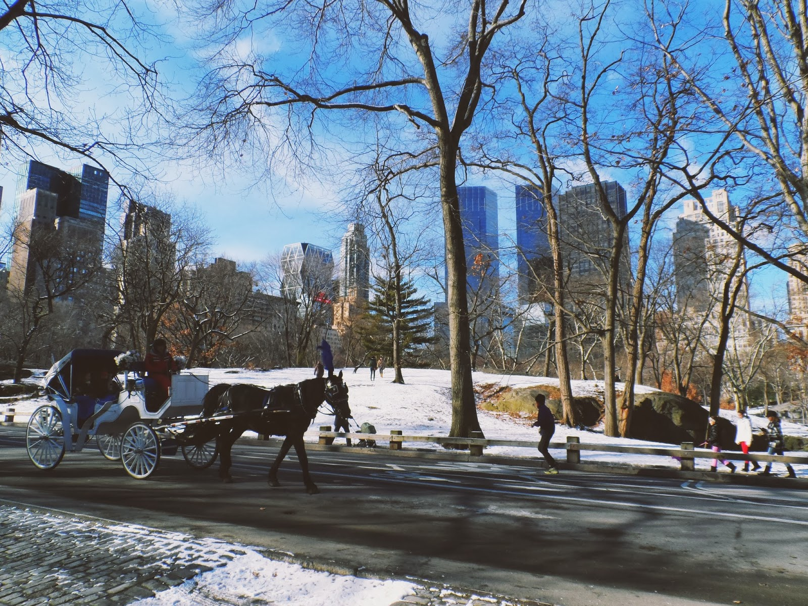 Central Park, New York, travel, snow, winter
