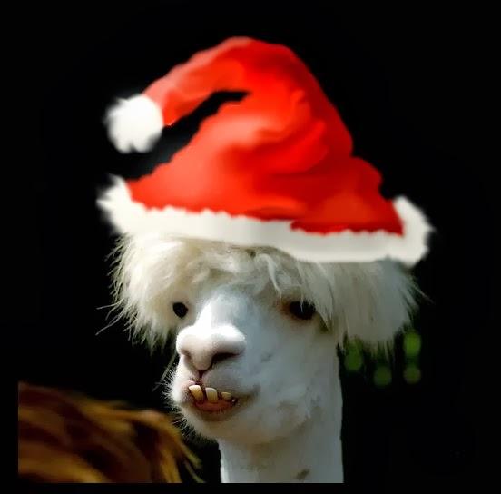 Llama's War of the Ring: 2013-12-01
