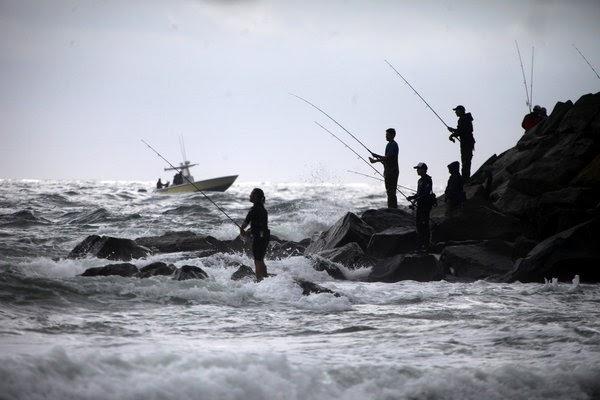 Voyages bass fishing time at montauk for Montauk ny fishing