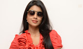 hot sexy Shirya saran in red top latest stylish photo shoot gallery