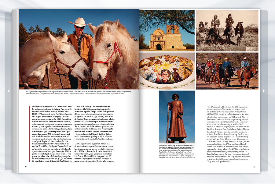 Spanish Conquistadors Horses