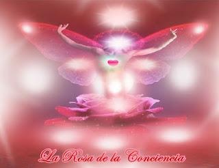 Querido, tú eres Mi Corazón, hablas por Mí, tú eres la Rosa de la Conciencia Divina que me representa.