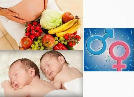 Makanan Yang Menentukan Jenis Kelamin Bayi