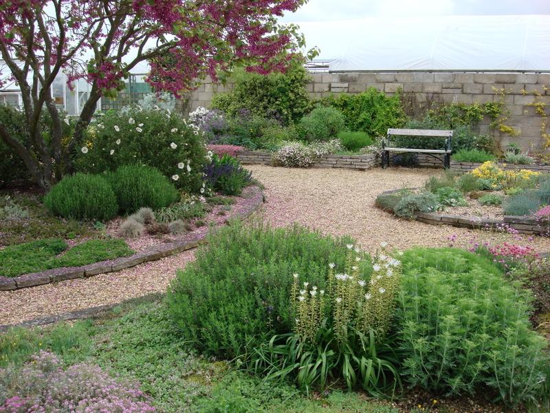 garden walkway gravel garden
