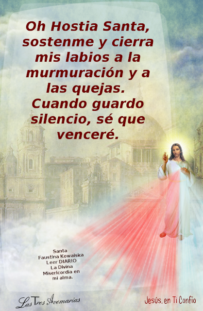 anotacion de santa faustina en el diario la divina misericordia hacerca de como vencer