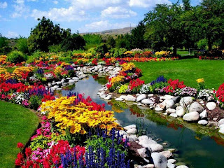 flores multicolores que bordean un rio