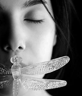 El silencio de los poemas/que los poetas olvidan