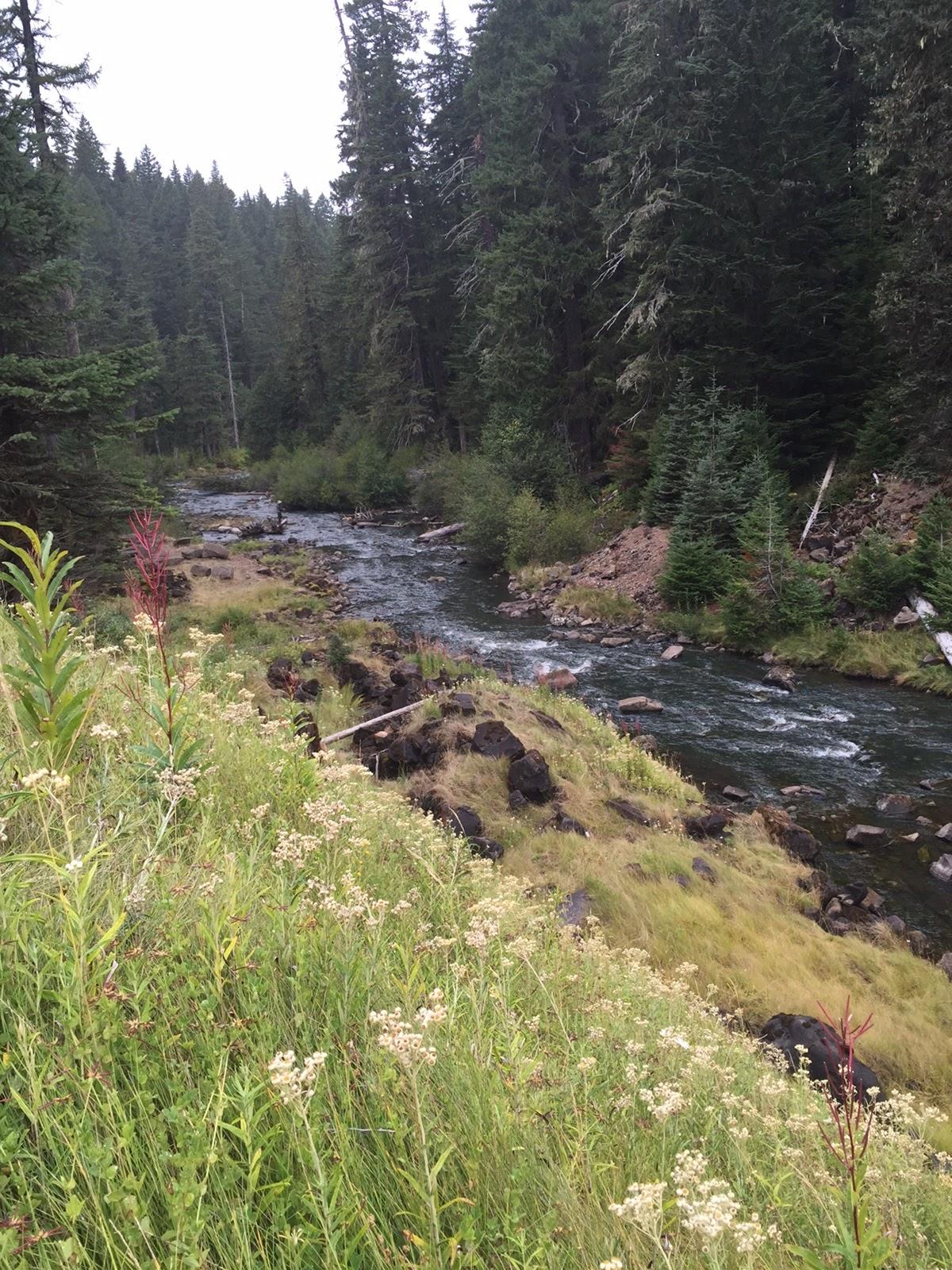 Fishing the mt hood area oak grove fork septermber 6 2015 for Hood river fishing