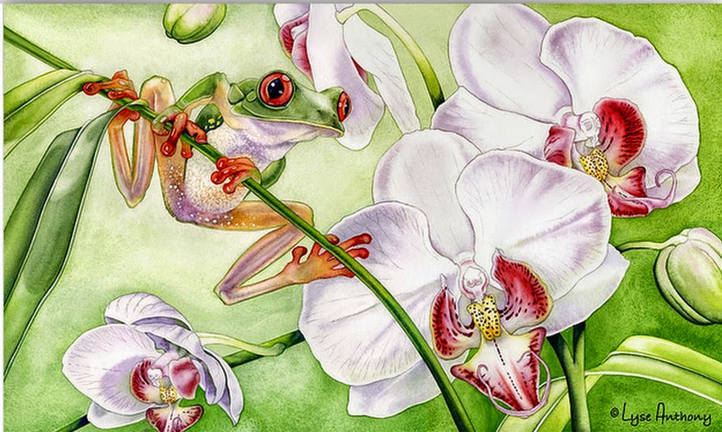 flores-y-animales-en-acuarelas