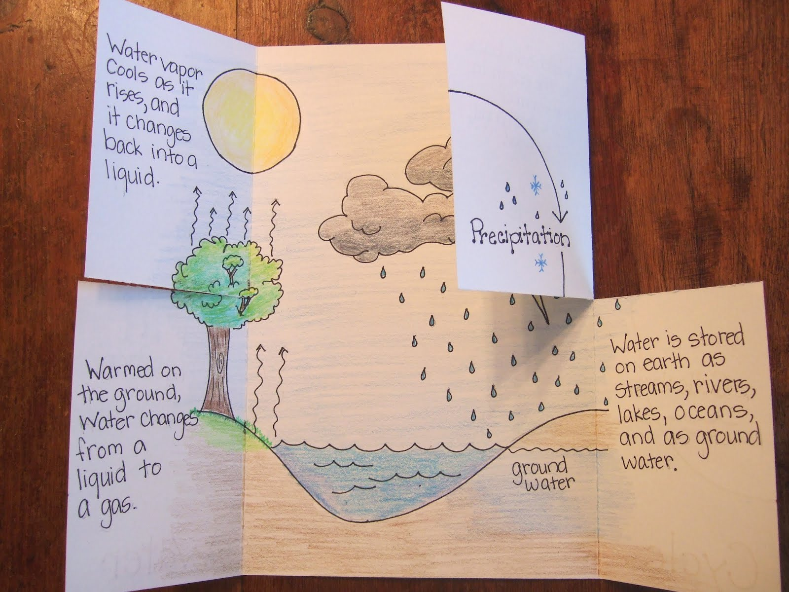 Water Cycle Essays