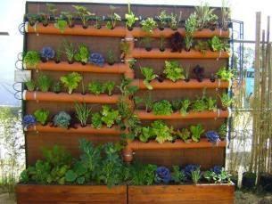 Recycle idea in home for Ideas para construir jardines verticales
