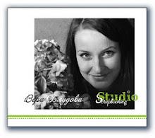 Была дизайнером с января 2012 по июль 2012