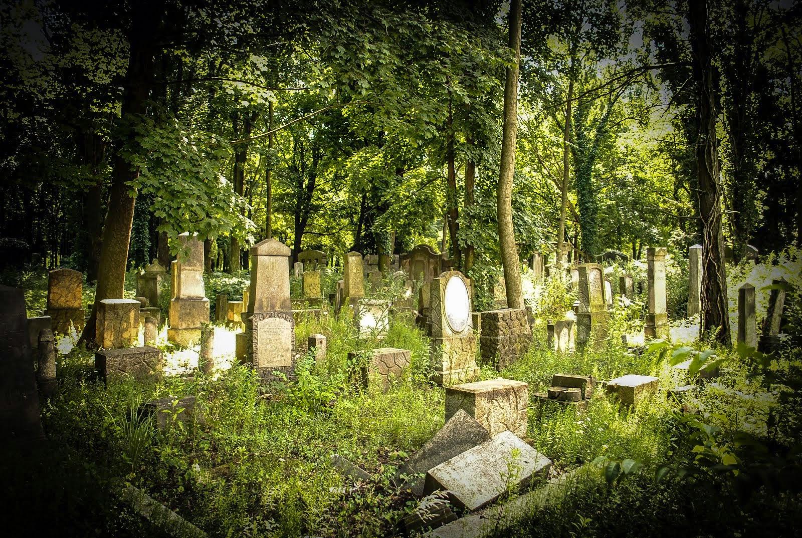 Custos Opieka nad grobami