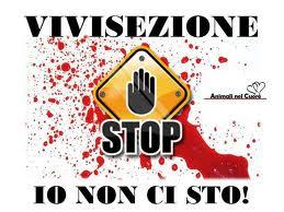 STOP VIVISEZIONE!