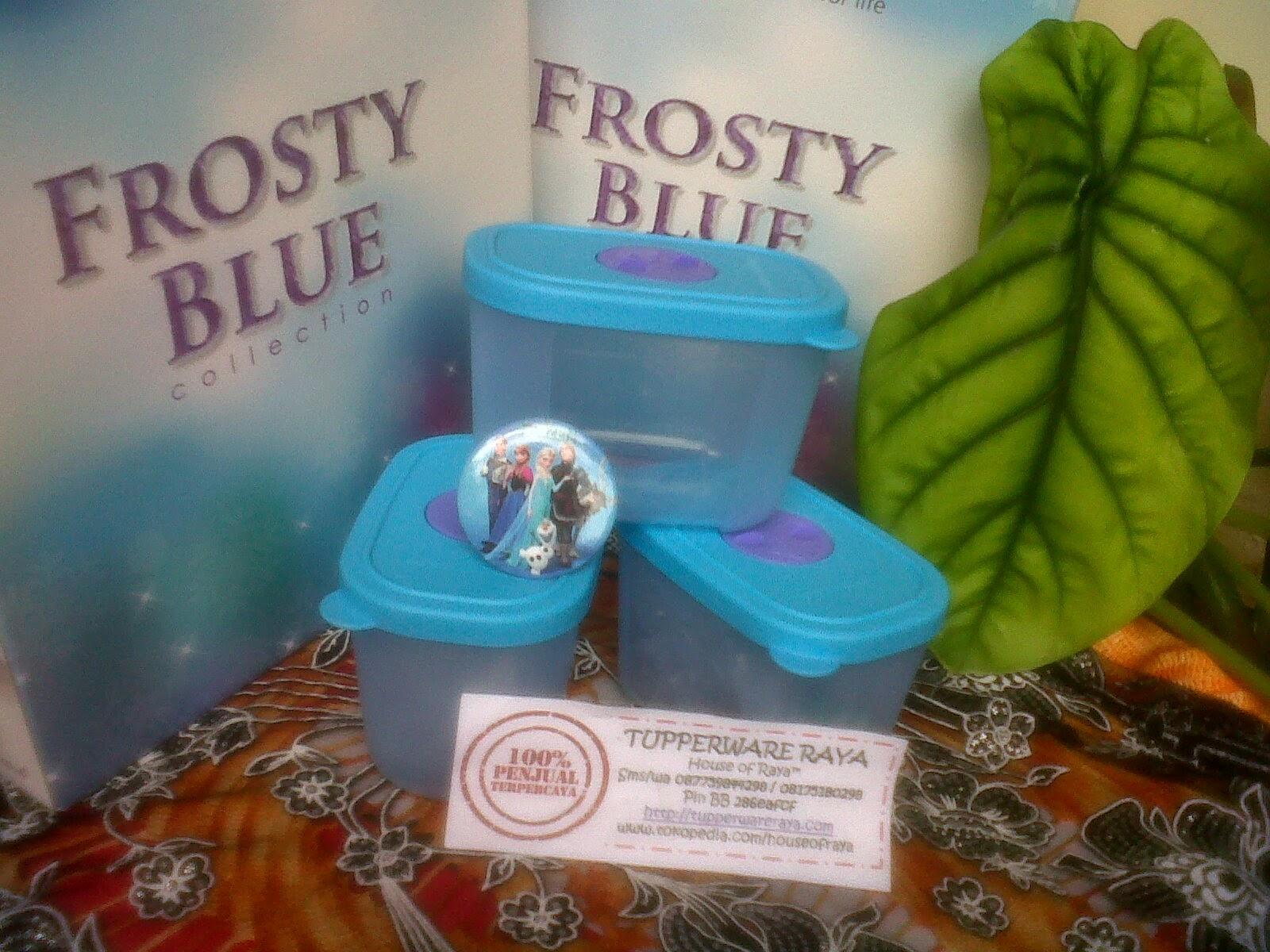 Paket Tupperware #FrozenAnna