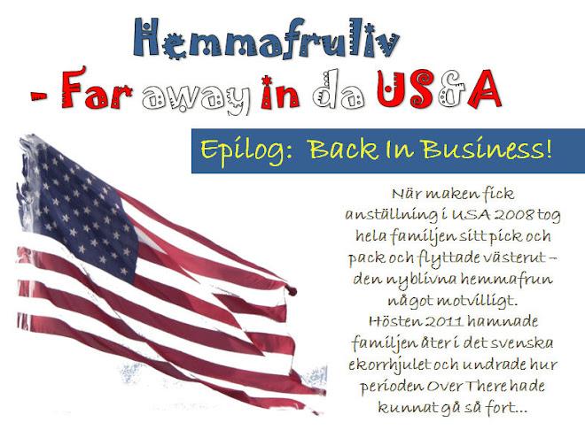 Hemmafruliv - Far away in da US&A