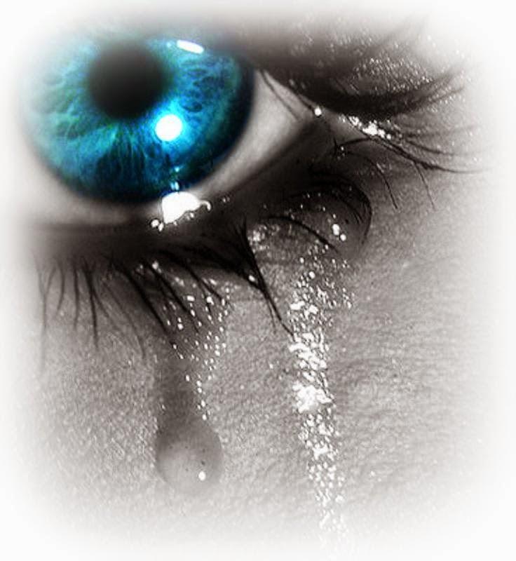 minyak air mata duyung