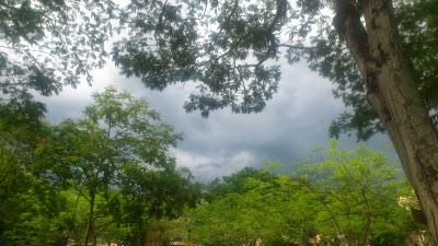 The dark clouds.