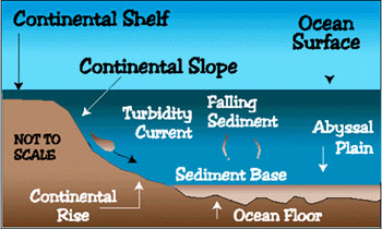 Landforms in the world coastal and oceanic landform 02 for Deep ocean floor definition