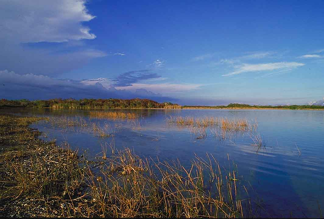 the issue of restoration of south floridas everglades wetlands