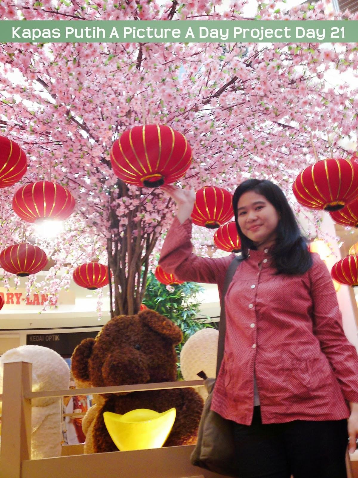Kisah pokok sakura