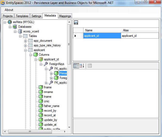 Microsoft EntitySpaces Meta Data Settings