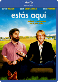 Estás Aquí (2013) DVDRip Latino