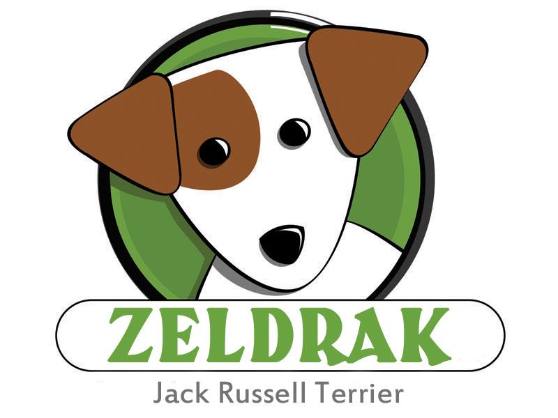 Jack Russell Terrier de Zeldrak