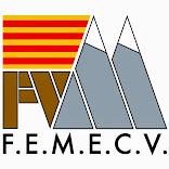 FEMECV
