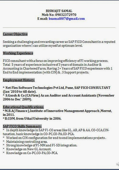 sap fico professional resume