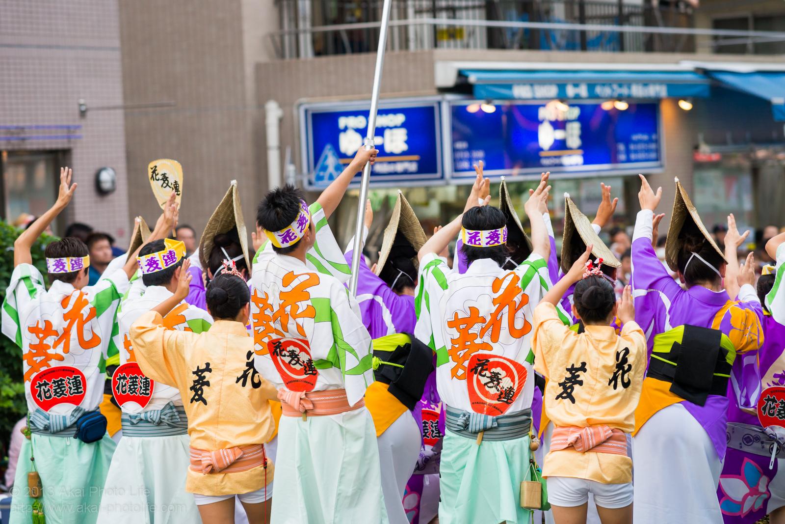 高円寺阿波踊り 花菱連の写真