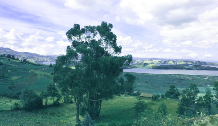Lago de Tota, desde oriente