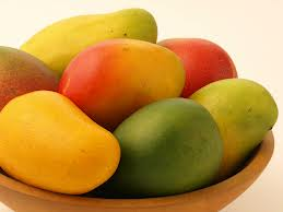 mango_suppliers