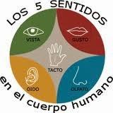 http://213.0.8.18/portal/educantabria/contenidoseducativosdigitales/primaria/cono_3_ciclo/CONTENIDOS/CUERPO%20HUMANO/DEFINITIVO%20NERVIOSO/Publicar/page2.html