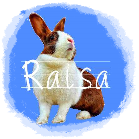 http://rabbitrubbish.blogspot.fi/p/raisa.html