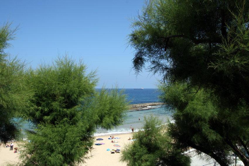 Paisagem da praia vista por entre a copa de árvores. Um barco ao longe no mar