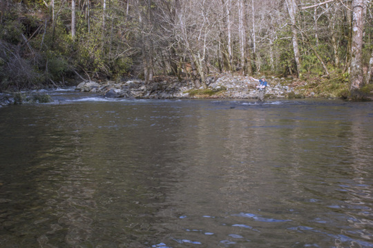 Fishing Little River in the Smokies