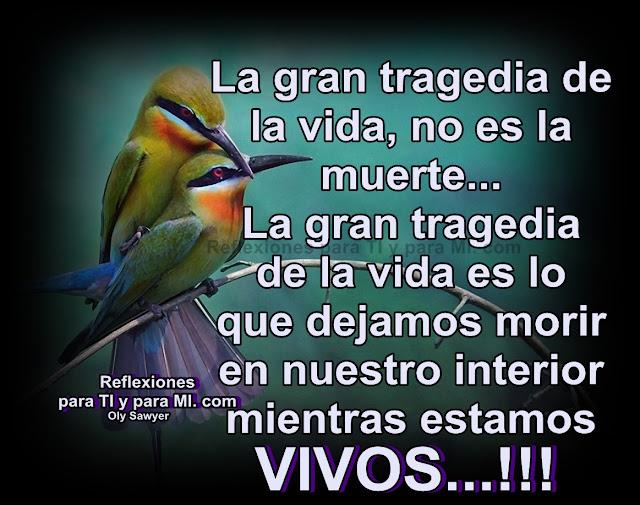La gran tragedia de la vida, no es la muerte. La gran tragedia de la vida es lo que dejamos morir en nuestro interior mientras estamos VIVOS...!!!