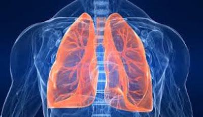 ΔΕΙΤΕ: 7 τροφές που καθαρίζουν τους πνεύμονες
