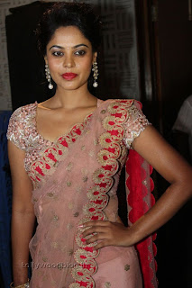 Actress Bindu Madhavi Saree Picture Stills 007.jpg