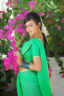 Actress Neelam Upadyaya Latest  Pictures in Green Saree  0003.jpg