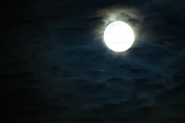 darkness white moon pimeys kuu