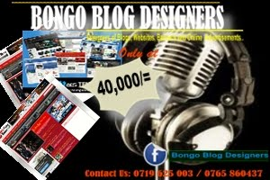 PROFESIONAL BLOG DESIGNERS