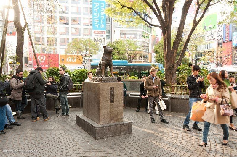 Resultado de imagen para estatua de hachiko