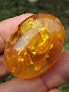 amber alami